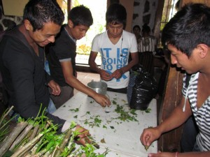 Young students learning how to cook chaya.