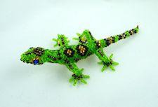 P-Lizard1